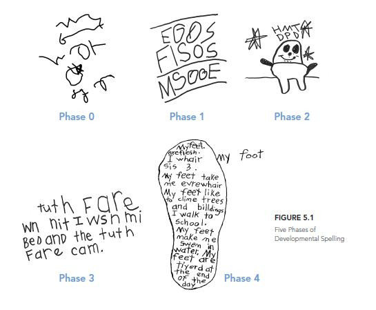 Five Phases Brain Words