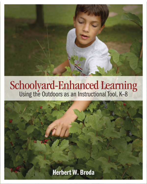 Ideas for Outdoor Learning Opportunities