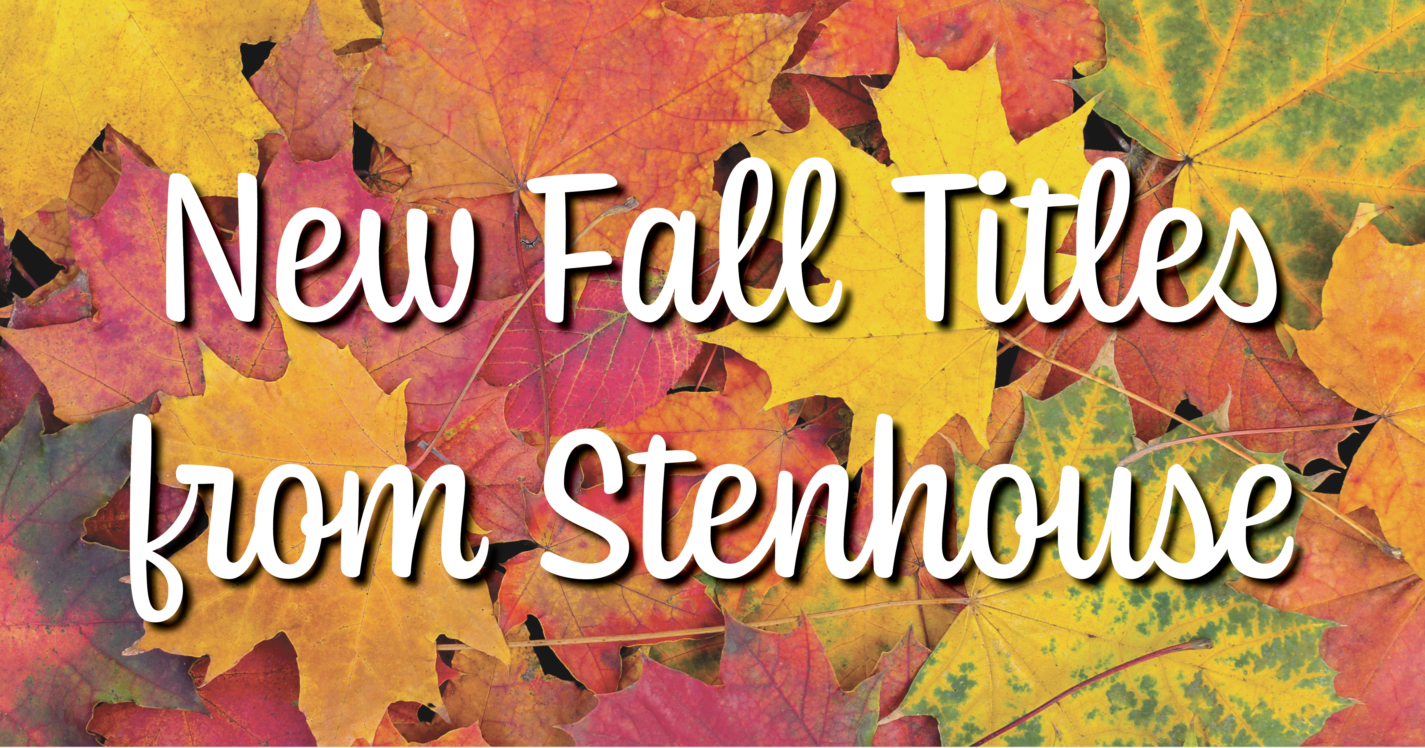 New Fall Titles from Stenhouse